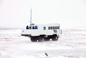 Polar Bears International at work on the observation deck of a  tundra buggy. Photo by Gerald Allain