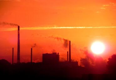 Orange Industry