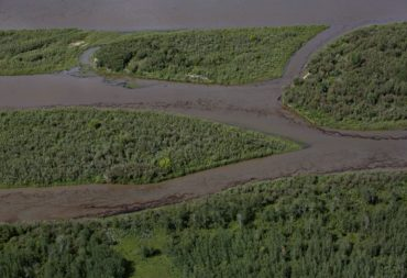 Oil is seen on the North Saskatchewan river near Maidstone, Sask on Friday July 22, 2016. Husky Energy has said between 200,000 and 250,000 litres of crude oil and other material leaked into the river on Thursday from its pipeline. THE CANADIAN PRESS/Jason Franson