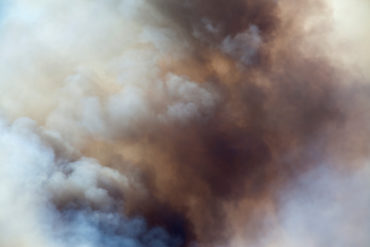 Close up of a forest fire, heat, smoke.