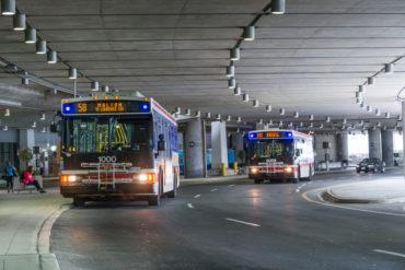 Toronto transit buses