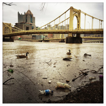 Allegheny River Pollution Downtown Pittsburgh