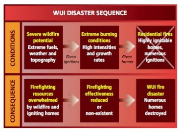 WUI Disaster Sequence