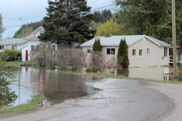 River flooding its bank