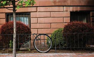 stolen-bike-theft