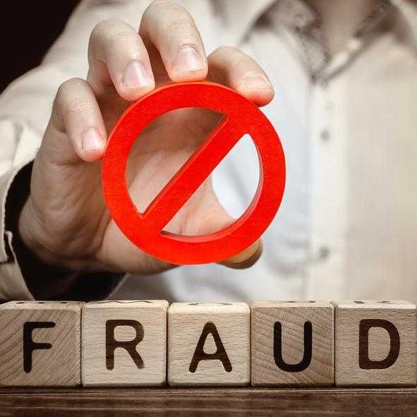 Single fraud investigation service december 2020