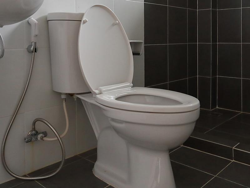 Toilet trouble means strata owner must reimburse corporation's $5,000 deductible