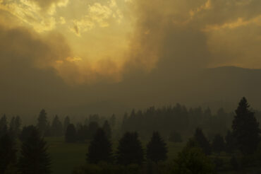 BC forest fire