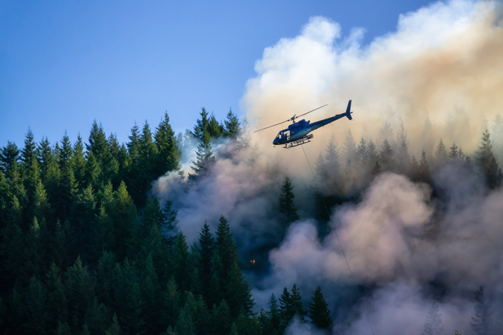 Wildfire service outlook points to rising fire risk for southern B.C.