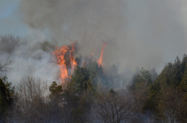 First Nations want wildfire declaration
